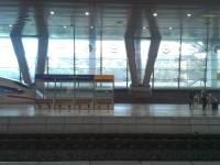 Zurück in Deutschland
