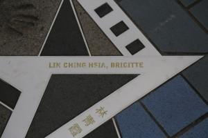 2langnasen_chinesische Filmstars