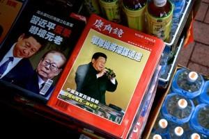 2langnasen_chinesischer-spiegel