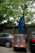 Insektenbekämpfung einfach und effektiv