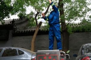 Peking und die Große Mauer