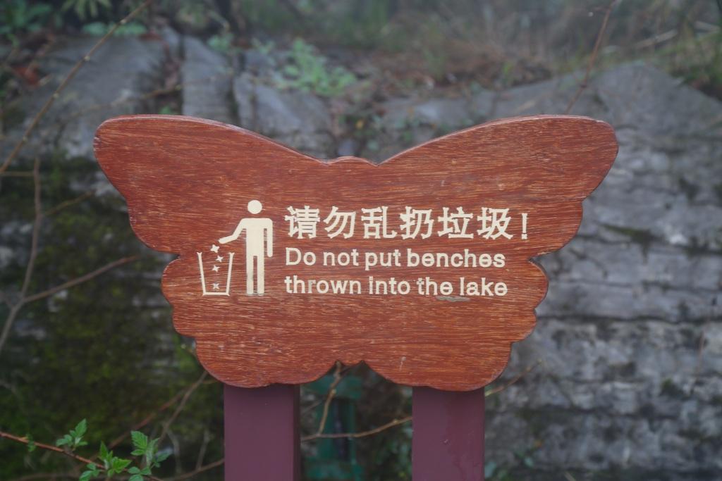 Chinglish im Wald? Ja, im Wald! Teil 2 – offen