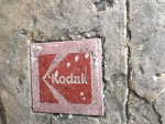 Kodak im Wald