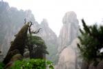 Das Huangshan-Gebirge