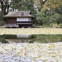 Osaka und Kyoto – Teil 2