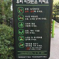 Blumen pflücken erlaubt